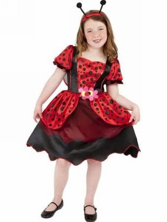 http://www.toyday.co.uk/shop/party-time/dressing-up/girl-s-ladybird-fancy-dress-costume/prod_4528.html#toy