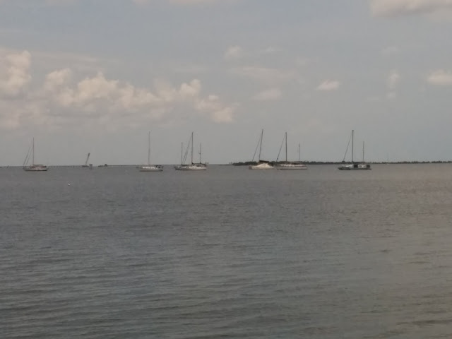Merritt Island - Anchored sailboats on the intercostal