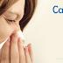 B型流感爆發,要不要補打四價疫苗?一定得快篩嗎?
