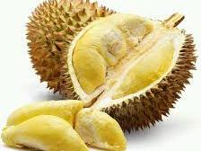 """Trik Paling Ampuh Budidaya Durian """"Montong"""" Agar Cepat Berbuah"""