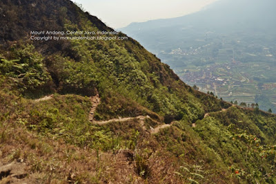 trek gunung andong