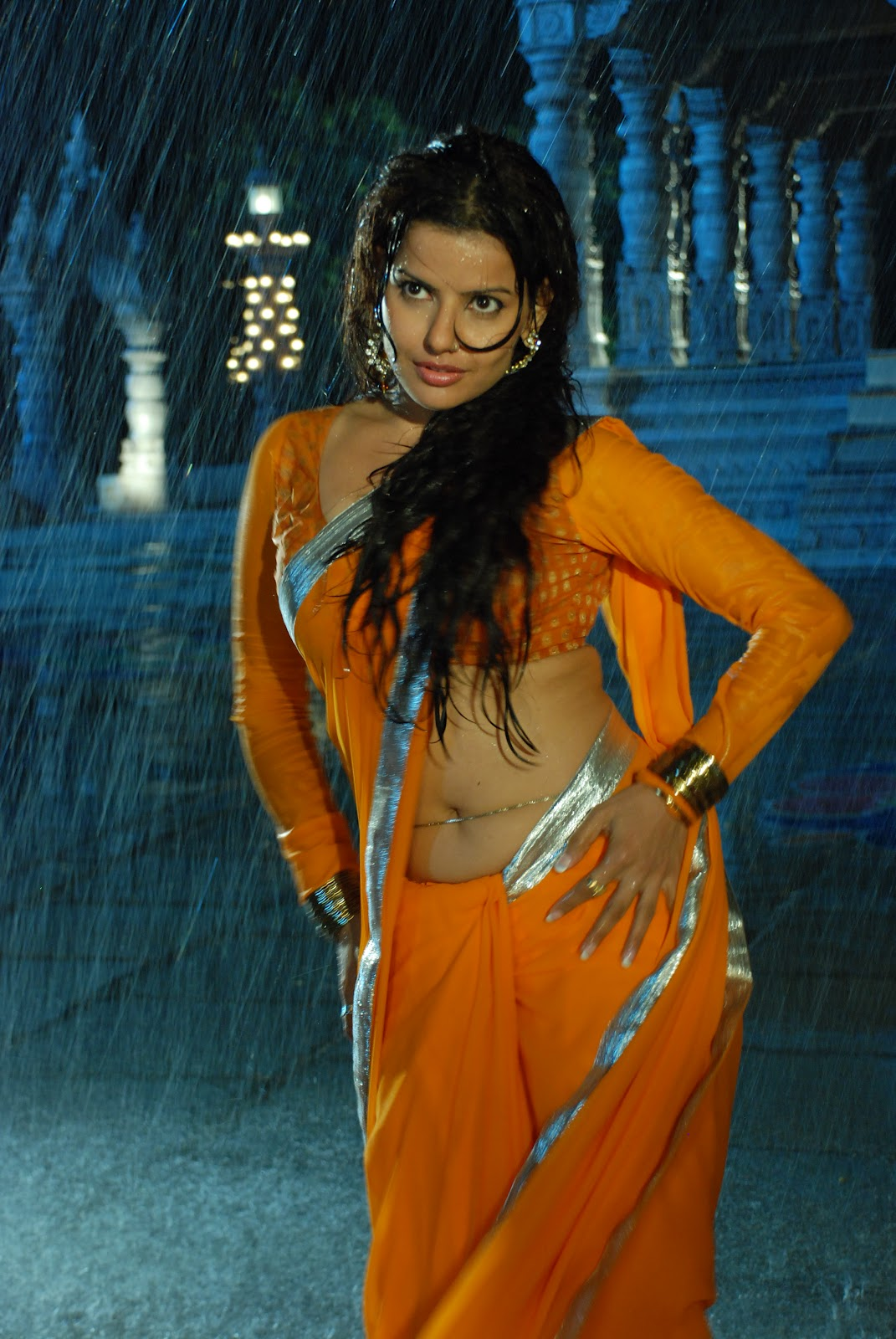 Madhu Sharma In Sharee