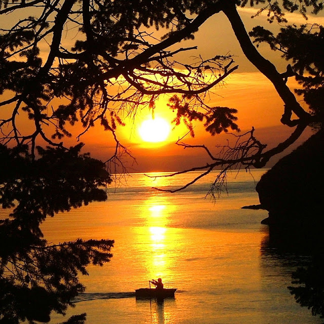 Sailing, camping, boating, parks, vacation, picture