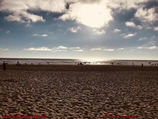 Oregon Coastal Hwy Canon Beach