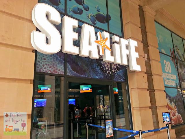 Sea Life Centre Manchester