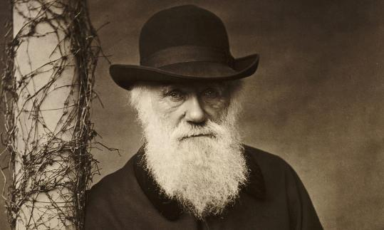 Charles Darwin: some called him the most dangerous man in England. Photograph: English Heritage/PA
