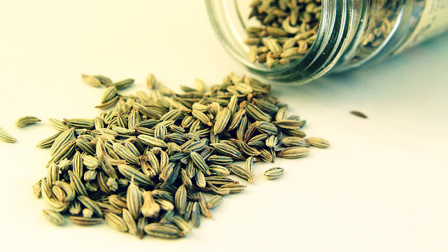 Fennel Benefits And Recipes