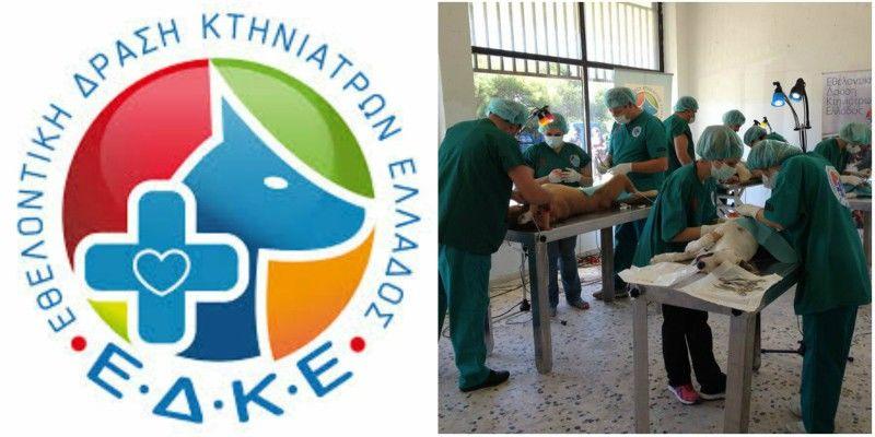 Η ΕΔΚΕ διαθέτει το δίκτυό της για τη διάσωση καμένων ζώων από πυρκαγιές