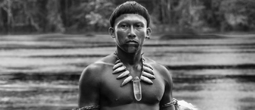 embrace-of-the-serpent-movie-trailer-clips-images-and-posters