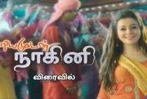 Priyamudan Naagini 19-01-2017 Polimer TV Serial