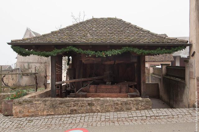Mittelbergheim ruta vino Alsacia Francia