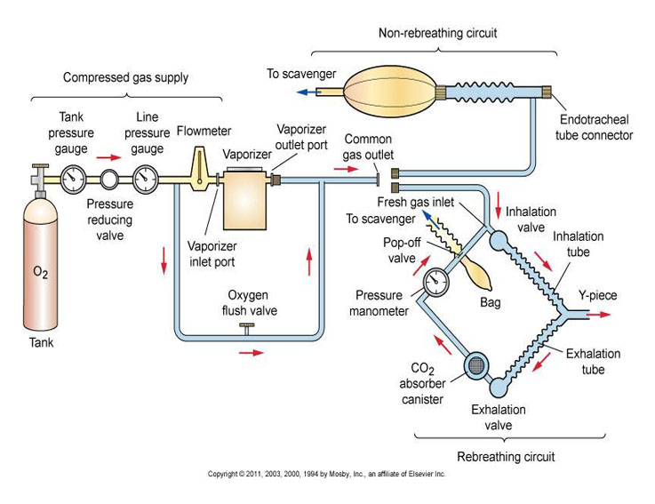 Eternity anesthesia machines schematic picture diagram bagan schematic picture diagram bagan anesthesia machines mesin anestesi ccuart Gallery
