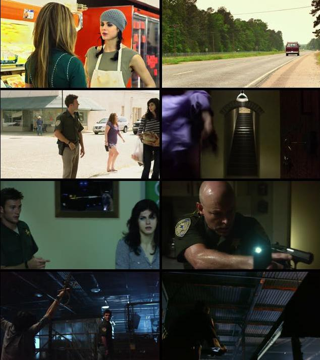 Texas Chainsaw 2013 Dual Audio Hindi 720p BluRay