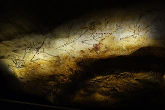 Expo : Lascaux 3, à la découverte de l'art pariétal de Cro-Magnon - Paris Expo - Porte de Versailles - Jusqu'au 30 août 2015