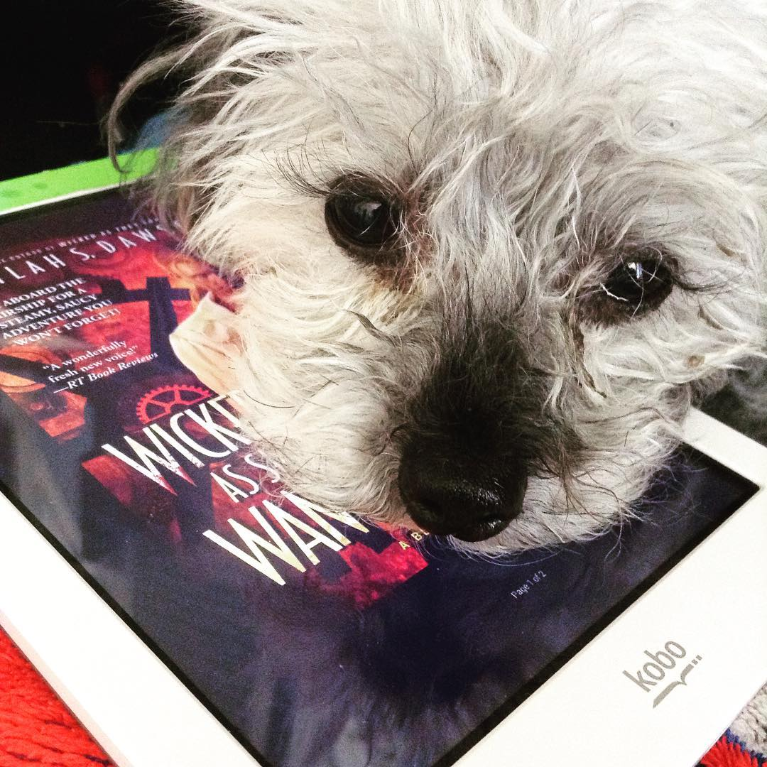 Murchie, a fuzzy grey poodle, rests his chin on a white Kobo with the red cover of Wicked As She Wants on its screen. His face obscures most of the image as he gazes directly at the viewer.