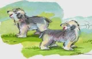 Fabula los 2 perros