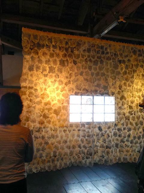葉脈のカーテン