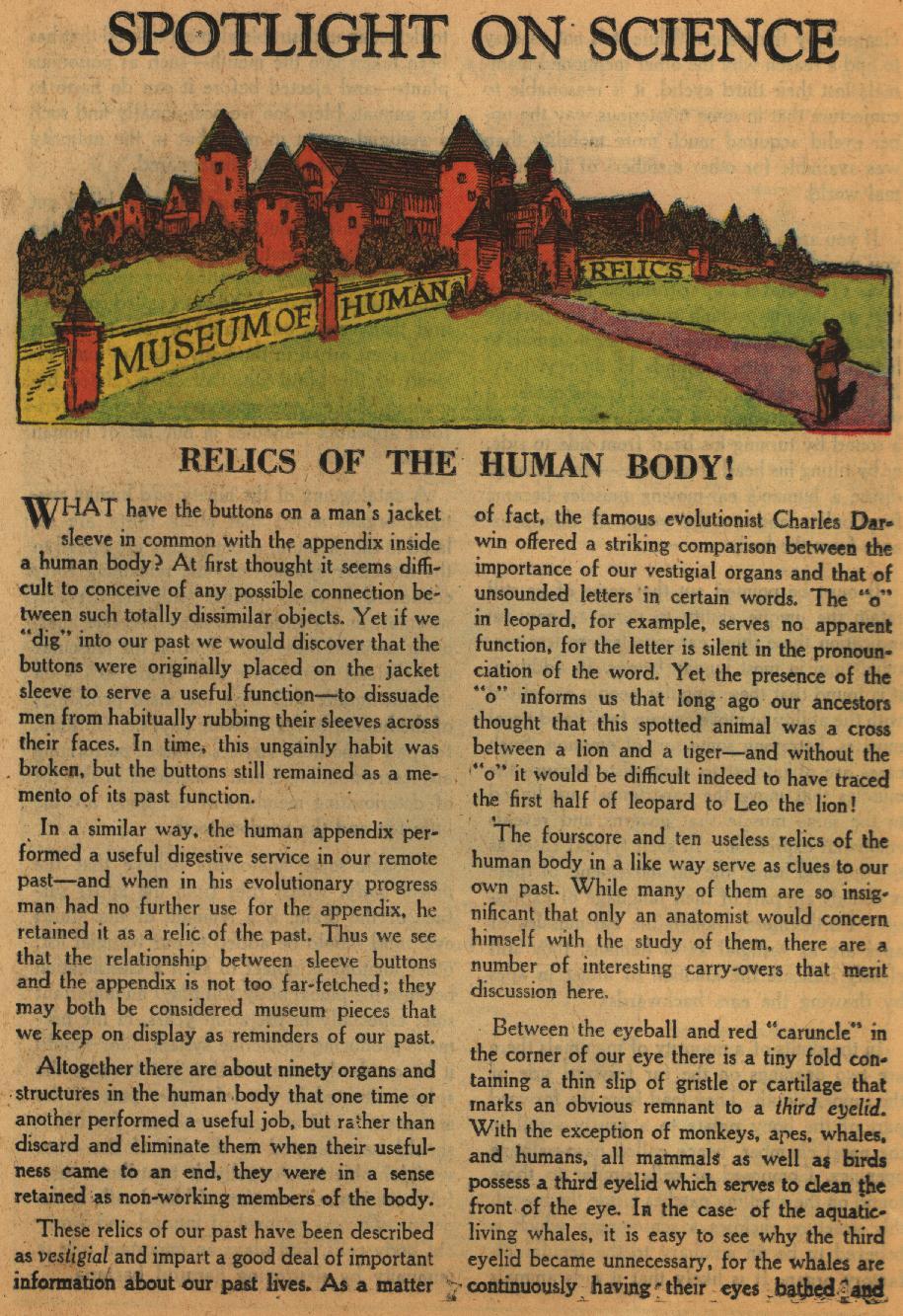 Strange Adventures (1950) issue 67 - Page 25
