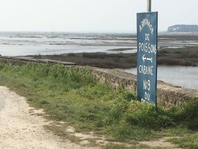 Foto de la Venta directa de ostras y pescado. Puerto ostrícola de Arès | caravaneros.com