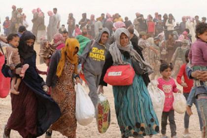 Sejak Tahun 2011, 3.506 Warga Palestina Terbunuh di Suriah