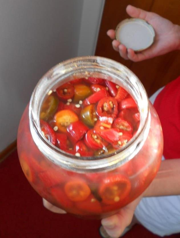Opened Jar of Sweet Mildly Pickled Refrigerated Hot Peppers Image