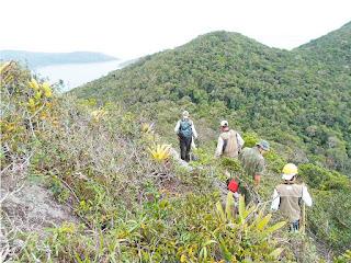 Governo do Rio elabora inventário florestal