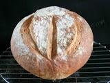 Pan de Trigo con Autólisis y Pasta