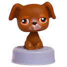 Littlest Pet Shop Special Boxer (#173) Pet