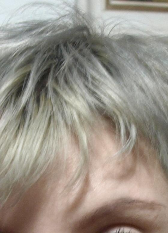 Reviews Update Blond Cenusiu Despre Decolorare Si Vopsiri Repetate