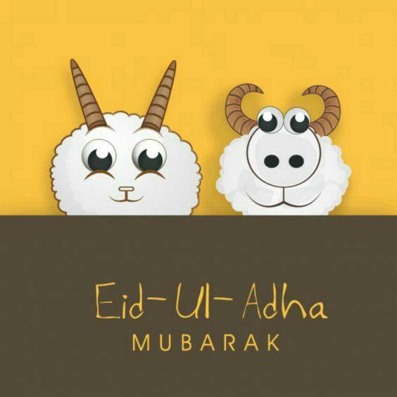 Best Eid Adha Mubarak SMS messages 2017