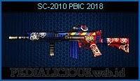 SC-2010 PBIC 2018