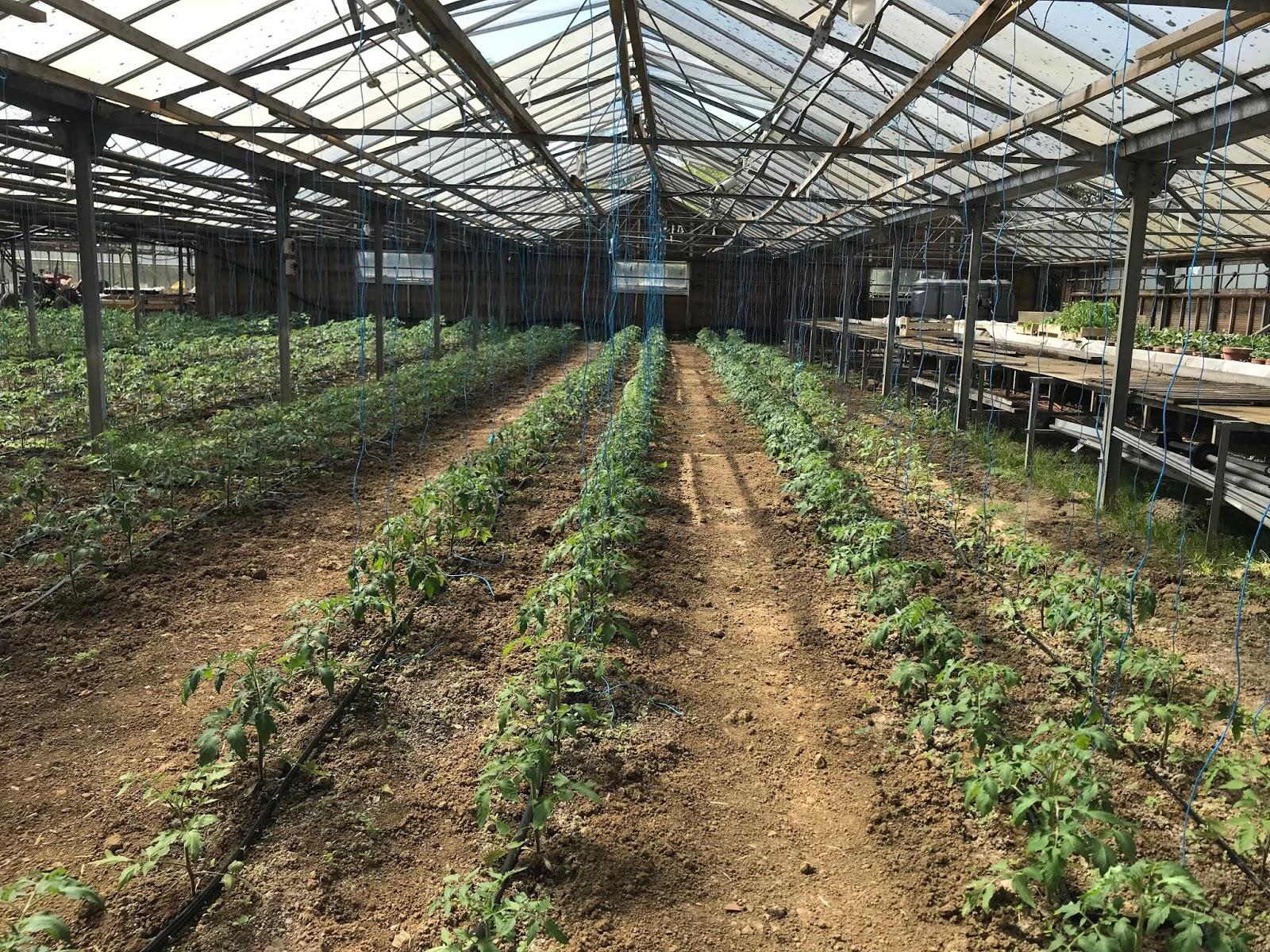 agriculture biologique yvelines