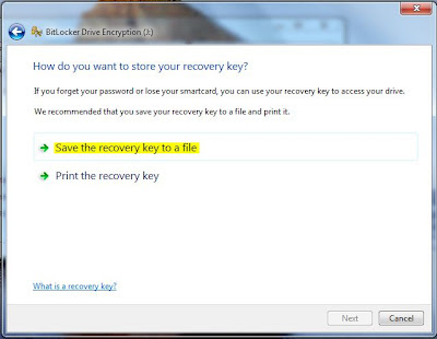 Protect pen drive with password