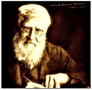 O Cientista Inglês Alfred Russel Wallace - Museu de Ciência e Tecnologia da PUCRS