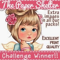 2 x The Paper Shelter Winner