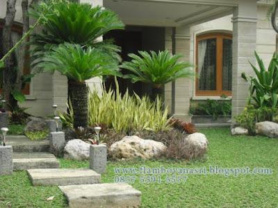 Tukang Taman Surabaya Konsep Taman Minimalis