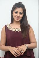 Nikki Galrani in a Brown Shining Sleeveless Gown at Nakshatram music launch ~  Exclusive 084.JPG