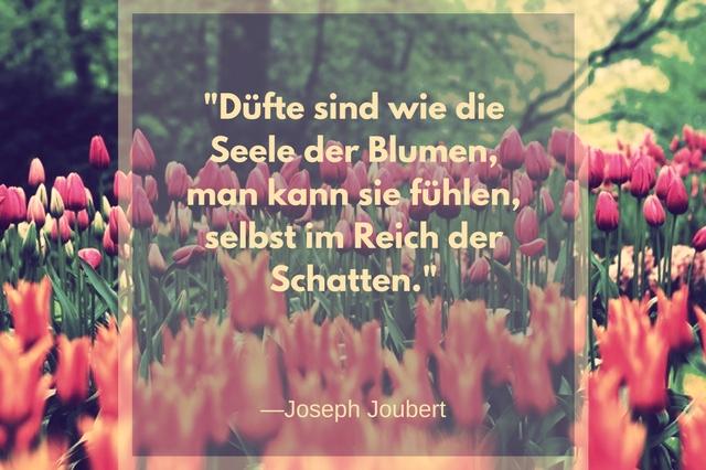 Düfte sind wie die Seele der Blumen man kann sie fühlen selbst im Reich der Schatten Joseph Joubert zitat, silberstunden blog, bild, photo, blogger, texte schreiben