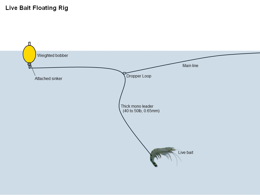 Floating Rigs | THE ANGLERS