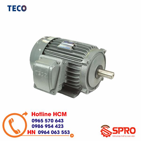 Động cơ điện Teco AESV1S-0.25