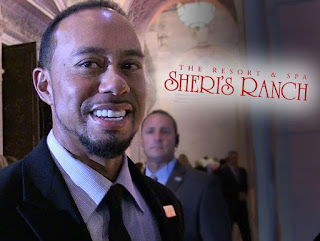 We Can Save Tiger Woods _ Nevada Hookers