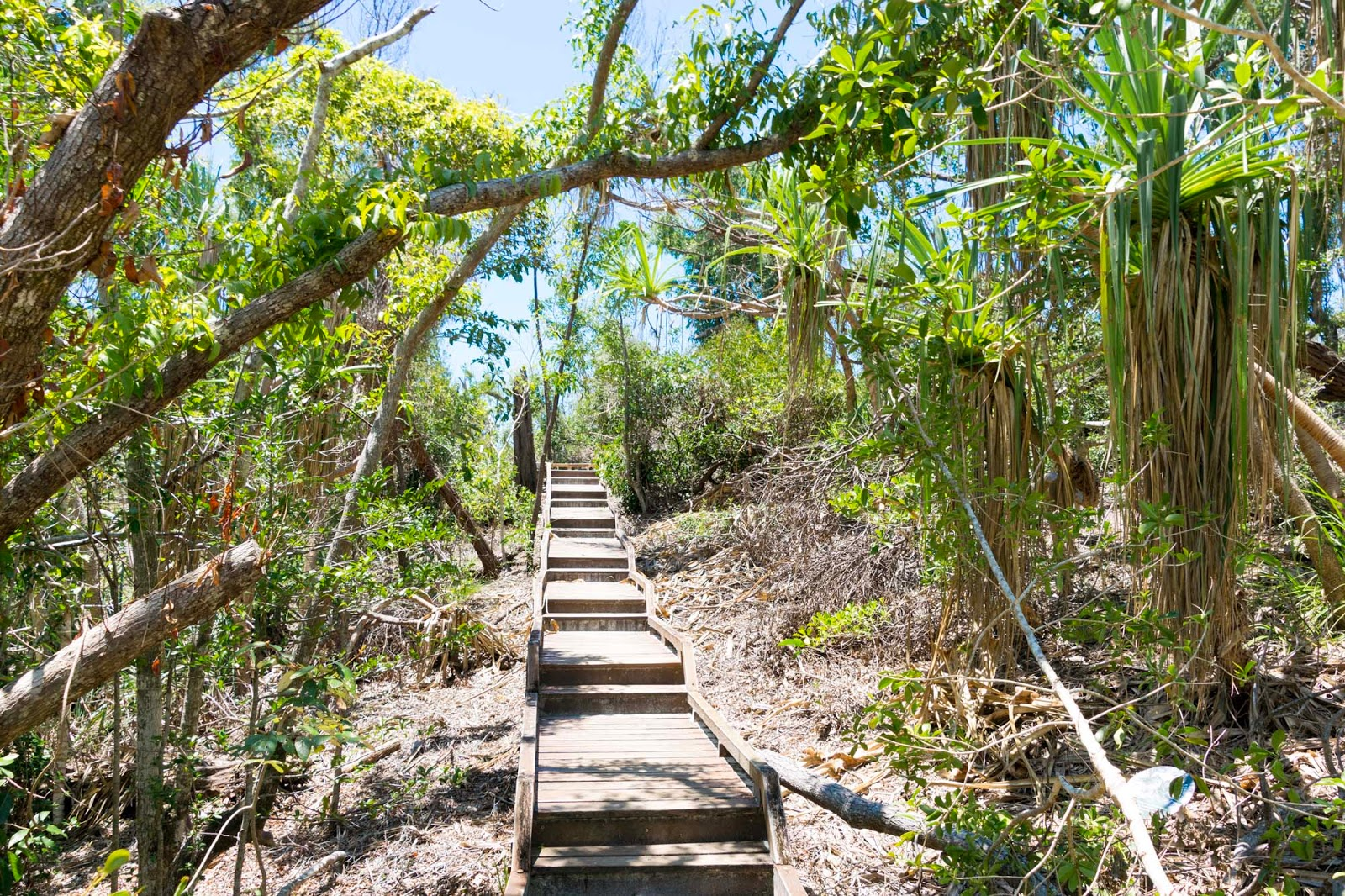 hiking to hill inlet