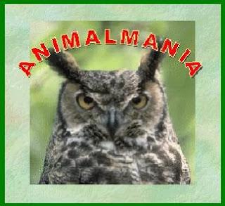 JCLIC Animalmanía
