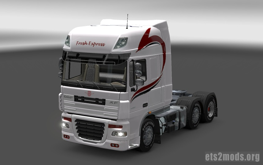 DAF Fresh Express Skin - view