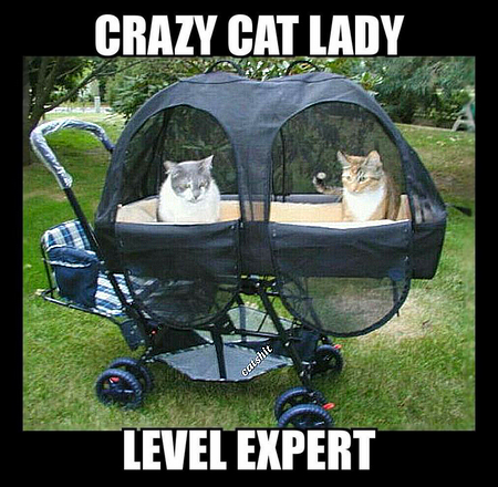 Crazy Cat Lady • Level Expert • Haha she's mad