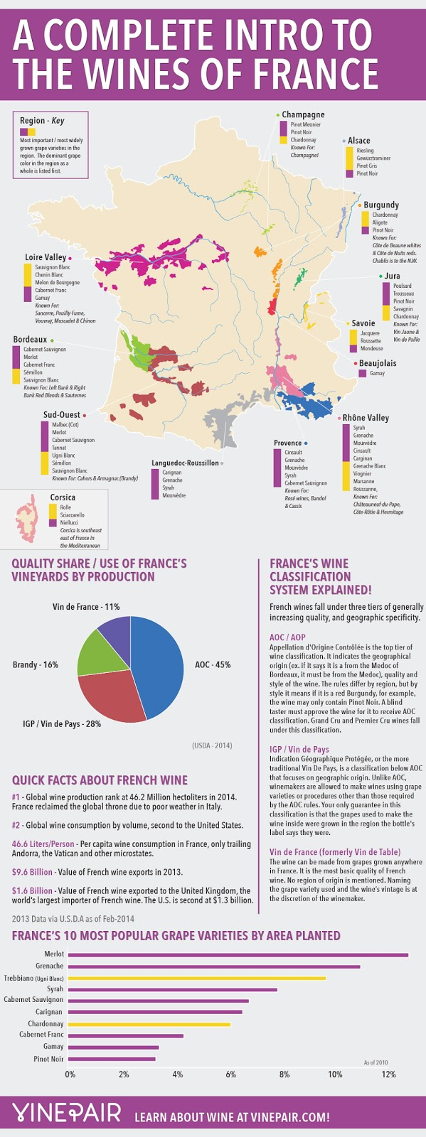A complete intro to the wines of France