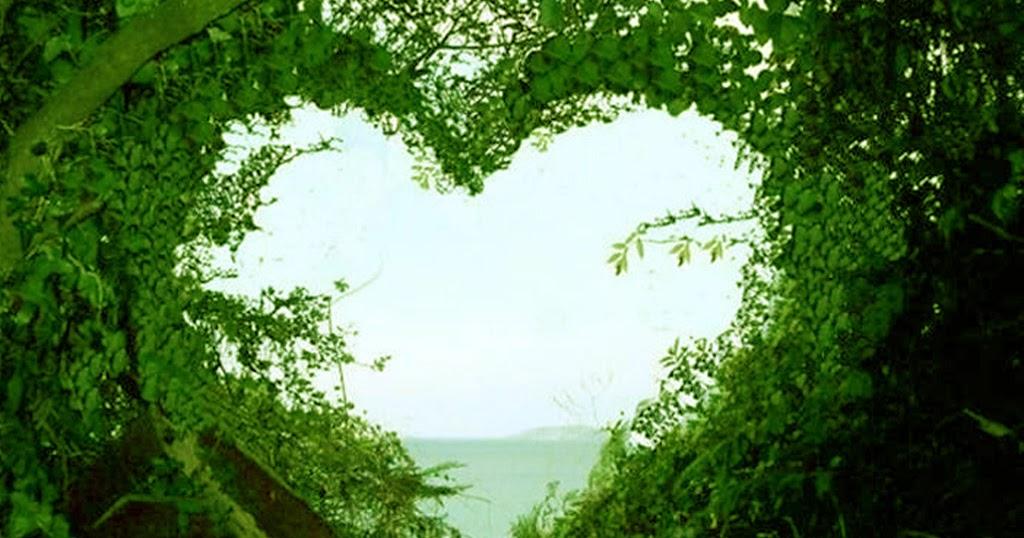 Nature Love Wallpaper Hd: HD Widescreen Backgrounds Wallpapers: Love Wallpaper
