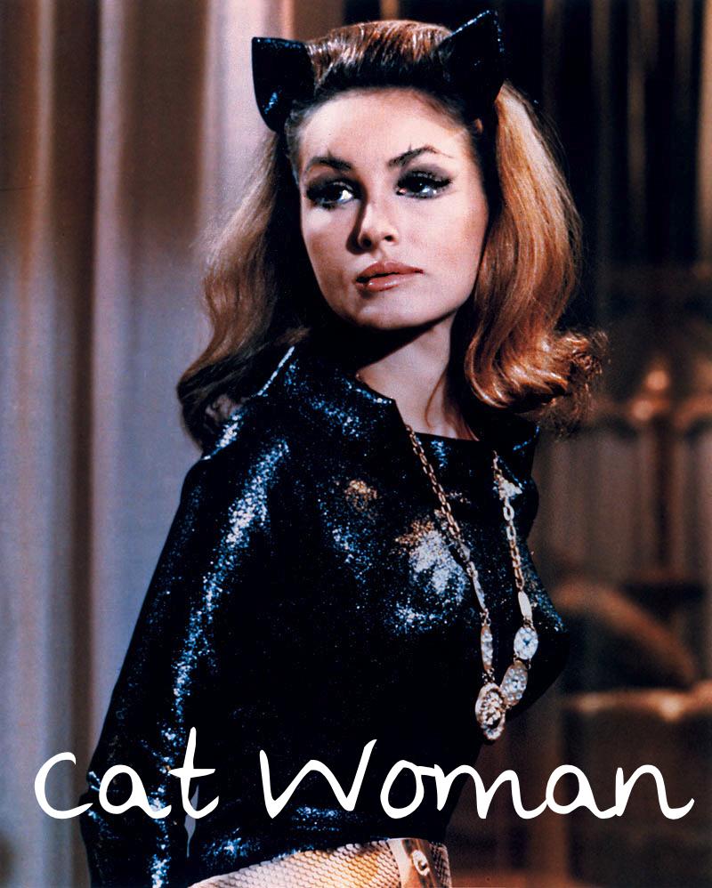 http://2.bp.blogspot.com/-JbkeeCzYSlc/UIlxU6jOUYI/AAAAAAAABv0/laFOwz_pZ8A/s1600/44949-cat-woman-julie-newmar-catwoman.jpg
