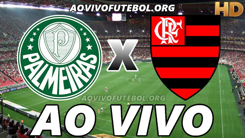 Palmeiras x Flamengo Ao Vivo na TV HD