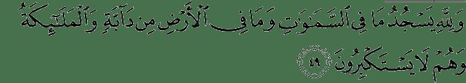 Surat An Nahl Ayat 49